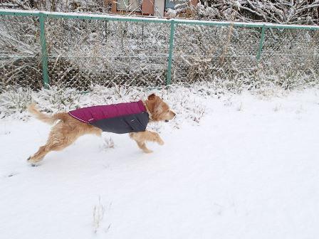 小雪★よしきの「ラフウェア使ってみました!」
