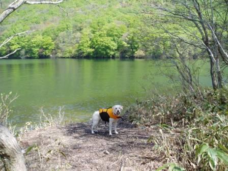 モモちゃん湖畔にて